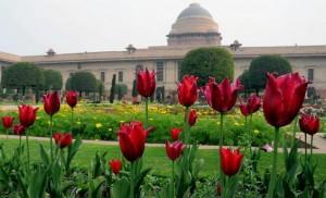 Mughal-Gardens-delhi